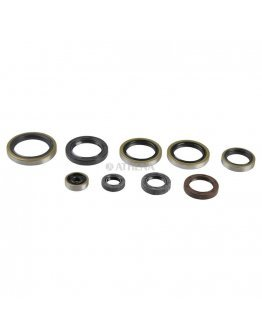 Sada gufier motora KTM EXC 250/300 04-16, SX 250 03-16, HSQ TE 250/300 14-16, TC 250 14-16