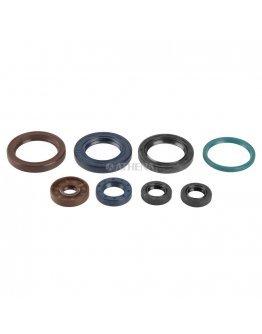 Sada gufier motora KTM SXF 250 2006-2012, EXCF 250 2007-2013